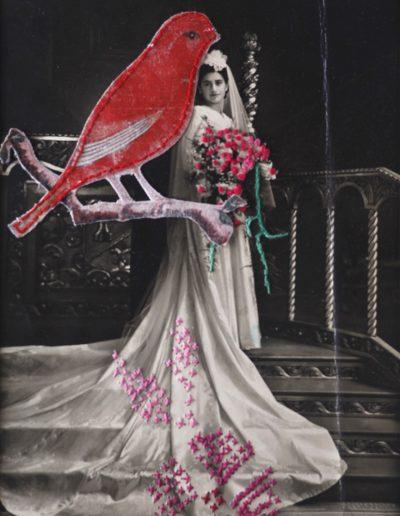 Ariadna Rojas